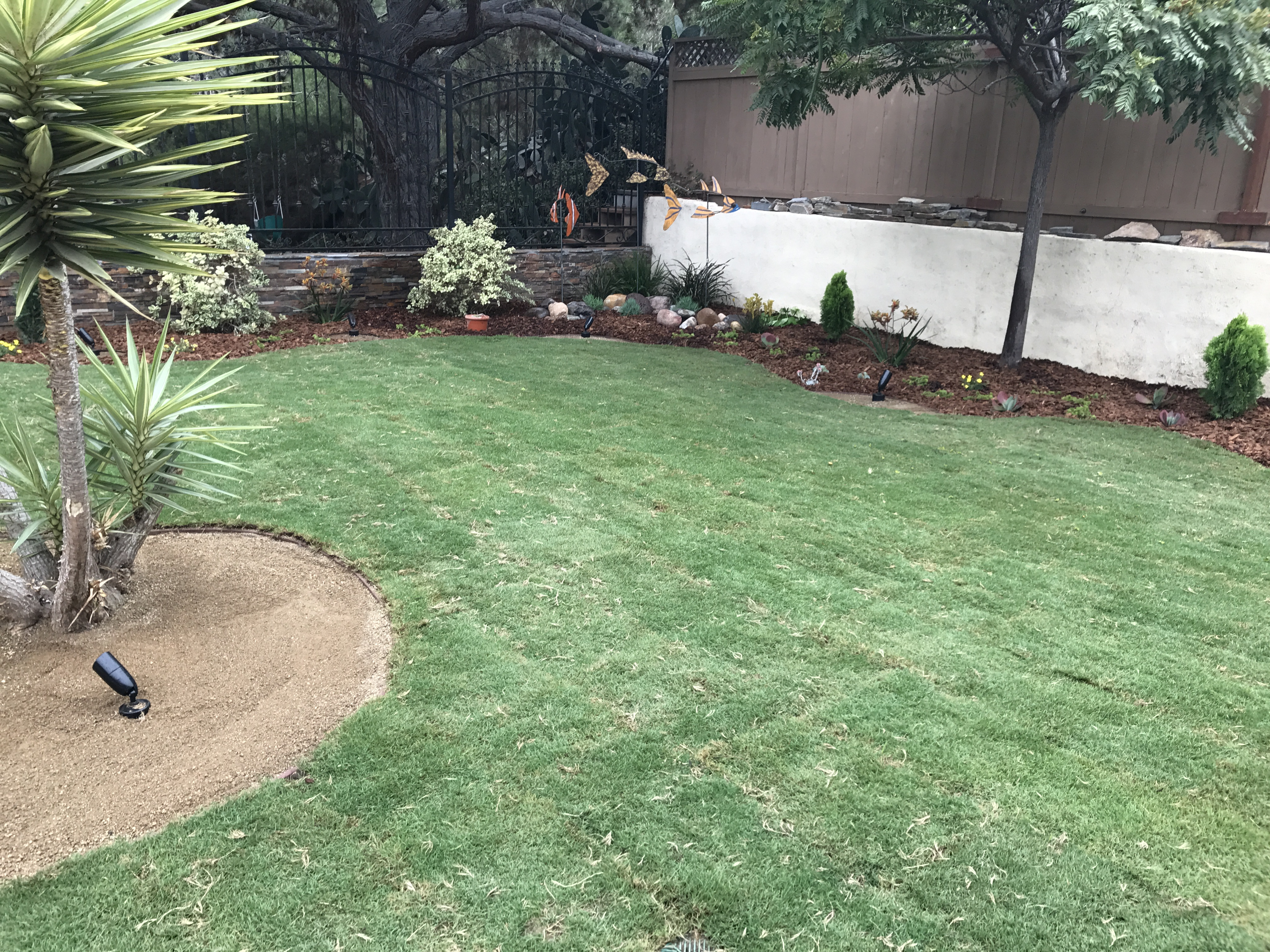 2018 San Diego Landscape Contractors, Maintenance And Design Services. All  Rights Reserved.